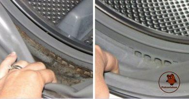Kaip atsikratyti pelėsio skalbimo mašinoje