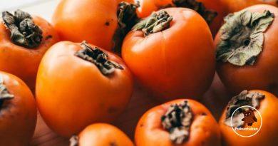 Kokie pokyčiai vyksta organizme, kai jūs valgote persimonus?