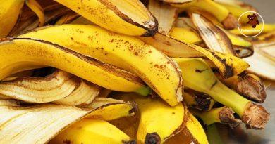 Banano žievės panaudojimo paslaptys! Gamta dalijasi savo turtais